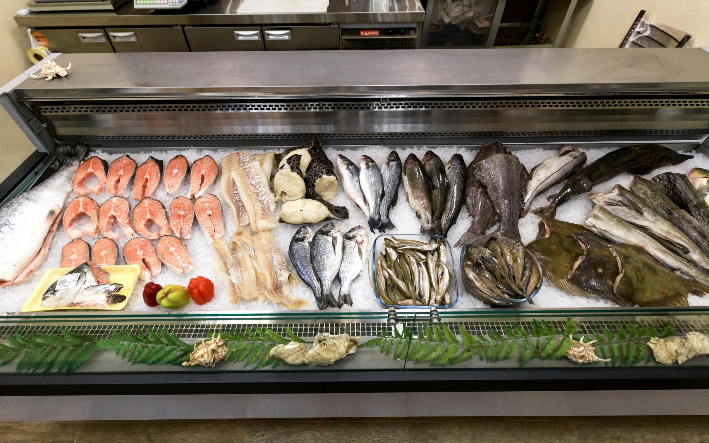 Основы выбора рыбной витрины